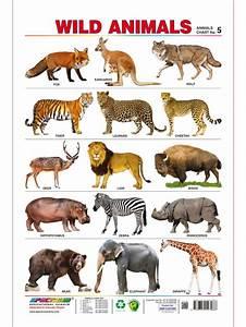 Animal En G : spectrum pre school kids learning poster educational wild ~ Melissatoandfro.com Idées de Décoration