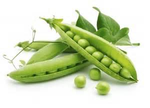 3 peas in a pod crops grown in rabi season onehowto