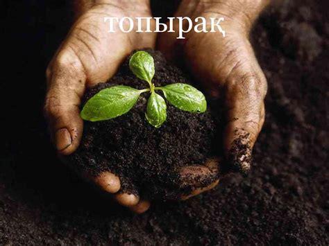 topyra topyraty arashirigi prezentatsiya onlayn