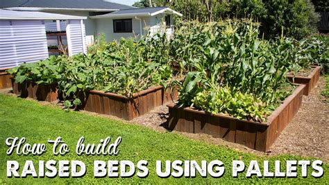 build raised beds  pallets update video