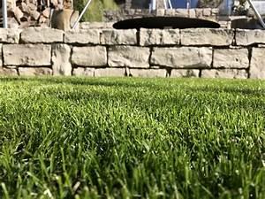 Tipps Für Den Garten : tipps f r den rasenbau ~ Markanthonyermac.com Haus und Dekorationen