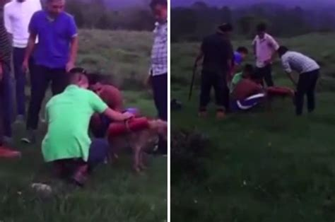 Honduran Teens Blow Up Dog By Strapping Fireworks To It Daily Star