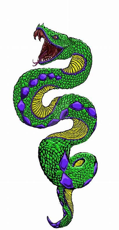 Snake Tattoo Transparent Clipart Serpent Clip Designs