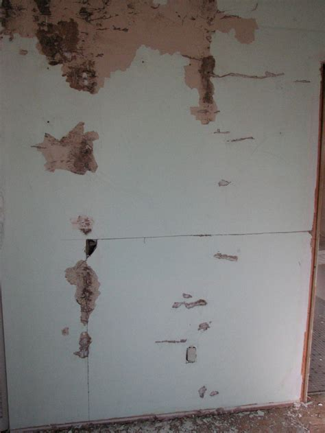 termite proof drywall general discussion contractor talk