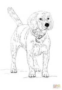 Beagle Kleurplaat by Beagle Coloring Page Free Printable Coloring Pages