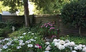 Pflanzen Für Schattengarten : der schattengarten garten berger ~ Sanjose-hotels-ca.com Haus und Dekorationen