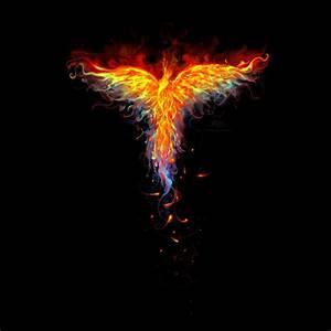 Fire Phoenix by Design-By-Humans on DeviantArt