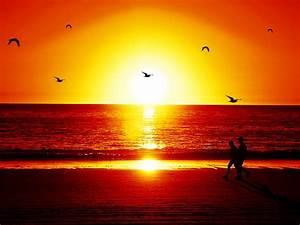 Romantic Sunset Quotes. QuotesGram
