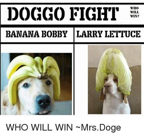 Who Is This Meme - fight win who will banana bobby larry lettuce who will win mrsdoge meme on me me