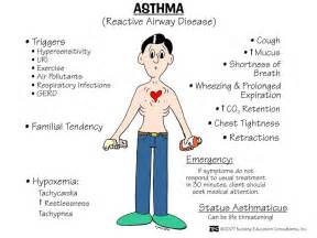 Asthma : Chronic inflammatory airway disorder characterized by airflow ...  Asthma Bronchodilators