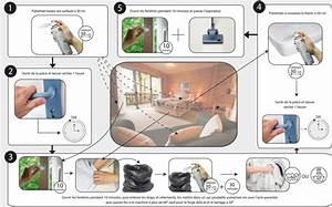 Fumigène Punaise De Lit : insecticide punaise de lit derm 39 alpes ~ Melissatoandfro.com Idées de Décoration