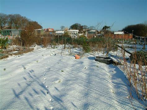December Allotment Tips  Suttons Gardening Grow How