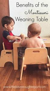 46 best Montessori Shelves: Language images on Pinterest ...