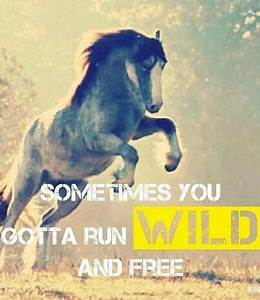 """Sometimes... Free Horses Quotes"