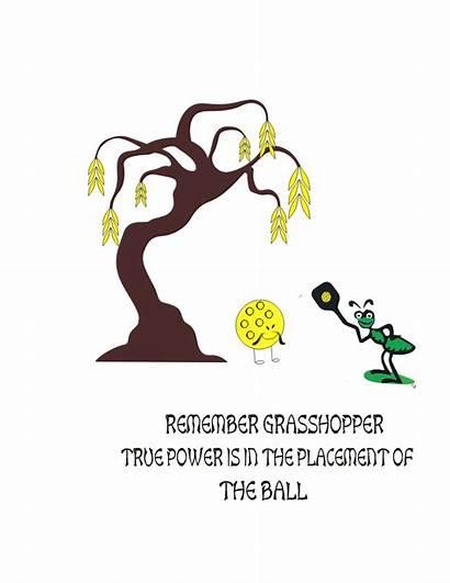 Pickleball Funny Grasshopper Tennis Sayings Paddle Humor