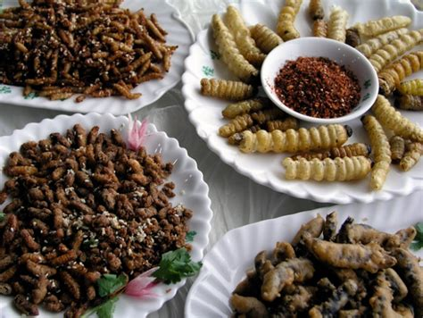 cuisine insectes comestibles insectos a la carta te animarías a probar estos platos