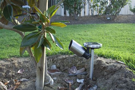 6 tips on how to choose solar landscape lighting 171 your