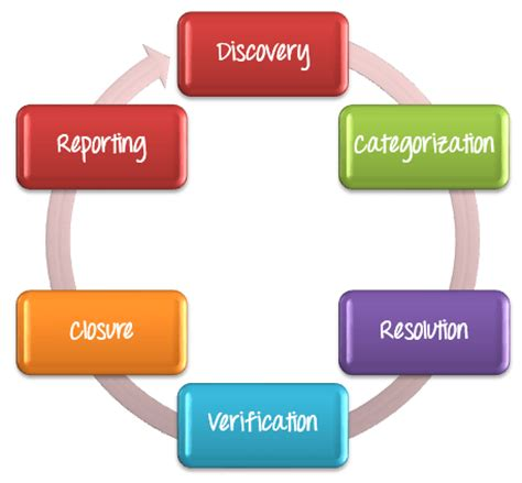 software bug learn defect management process