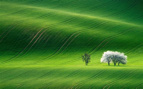 green landscape wallpapers hd wallpapers id
