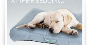purina petlife tear chew flea resistant bedding With rip proof dog blanket