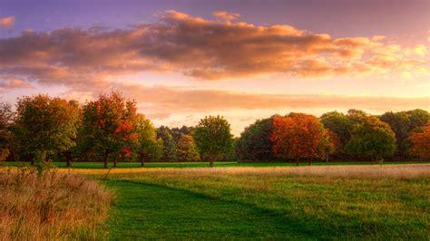 壁紙 自然の風景、秋の日の出、森、空、雲 2560x1600 Hd 無料のデスクトップの背景, 画像