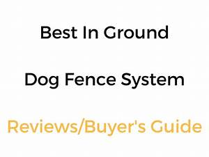 Best in ground invisible dog fence system in 2018 19 for Top rated underground dog fence