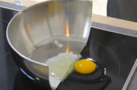 choose  portable induction cooktop      buy