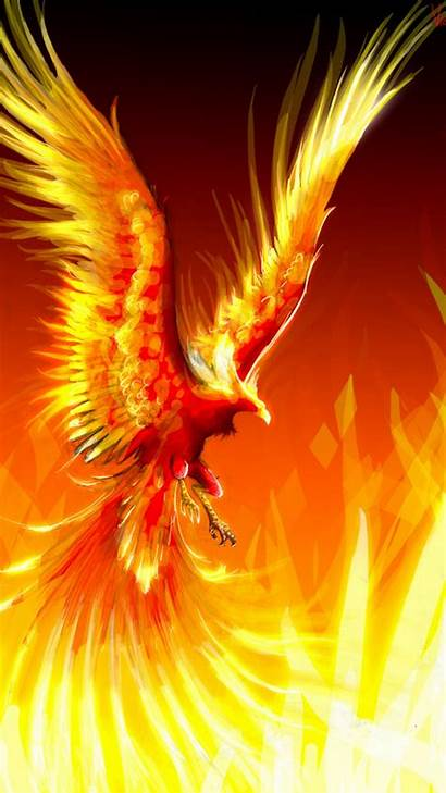 Phoenix Bird Wallpapers Android Backgrounds Resolution Background