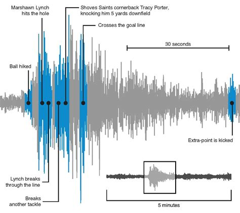 seattle seahawks pacific northwest seismic network