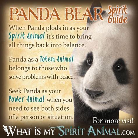 Names That Mean Bear Panda Bear Symbolism Meaning Spirit Totem Power Animal