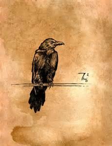 Raven Bird Drawings