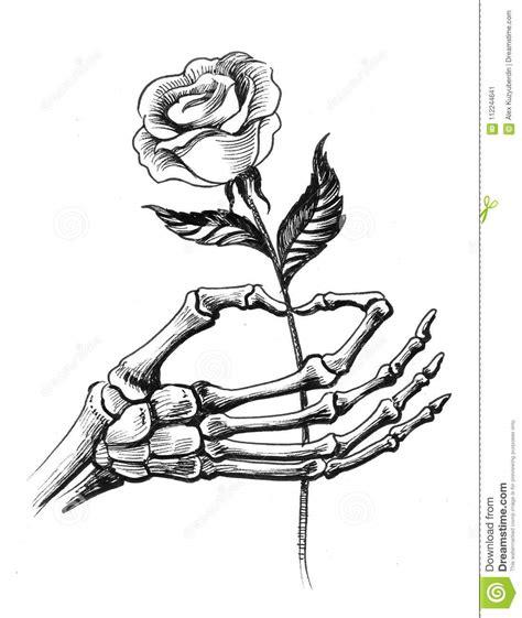 skeleton hand   rose stock illustration illustration