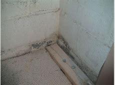 Cleaning a moldy basement Basement Gallery