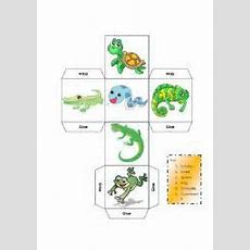 Matching Worksheets Reptil Animals  Animals  Pinterest  Reptiles And Homeschool