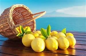 Wie Lagert Man Zitronen : sizilien ii virtuose zitronenk che bei kochform ~ Buech-reservation.com Haus und Dekorationen