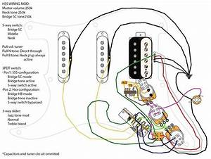 Wiring Diagram Fender Hss Strat Collection Beautiful