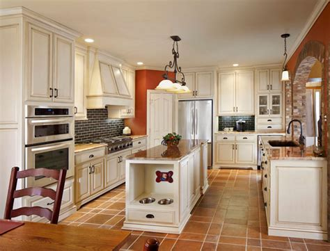 Best Flooring For Kitchen And Pets by Amazing Pet House Design Built Perfectly In A House
