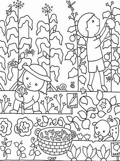 Coloring Pages Colouring Flower Garden Gardens Gardening