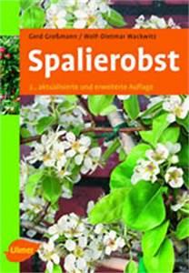 Spalierobst Als Sichtschutz : spalierobst buchbesprechung ~ Orissabook.com Haus und Dekorationen