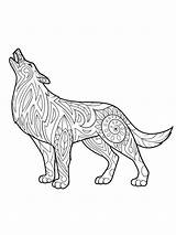 Coloring Pages Wolf Adults Adult Mycoloring Wolves Printable Teens sketch template