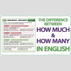 How Much? How Many?  English Grammar Lesson Youtube