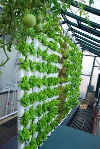 Building A Vertical Aquaponics System