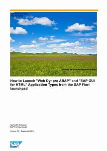 How To Launch Web Dynpro Abap And Sap Gui For