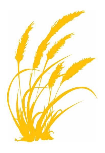 Clipart Svg Grass Farm Farming Wheat Agriculture