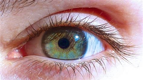 change my eye color my changed colour after vegan for 6 years