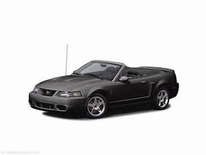 2004 Mustang Cobra Orange For Sale - ZeMotor