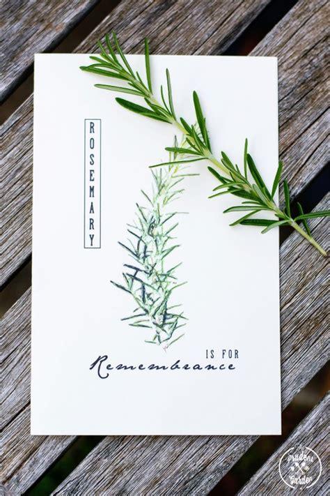 printable herb cards