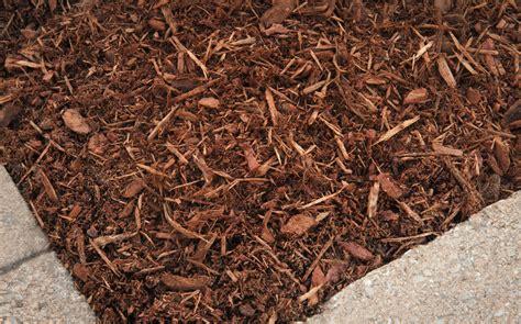 cedar vs hardwood mulch golden hemlock wood mulch a c hesse