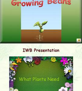 Teaching Students With Learning Difficulties  Gardening