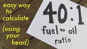Evinrude Oil Mix Chart Evinrude Fuel Oil Mix Ratio Impremedia Net